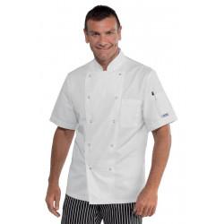 Veste de cuisine homme manches courtes LUCCA Blanc