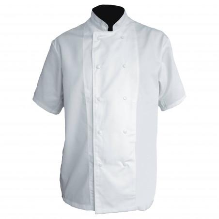 Veste de chef cuisinier manches courtes polycoton CHICAGO PBV