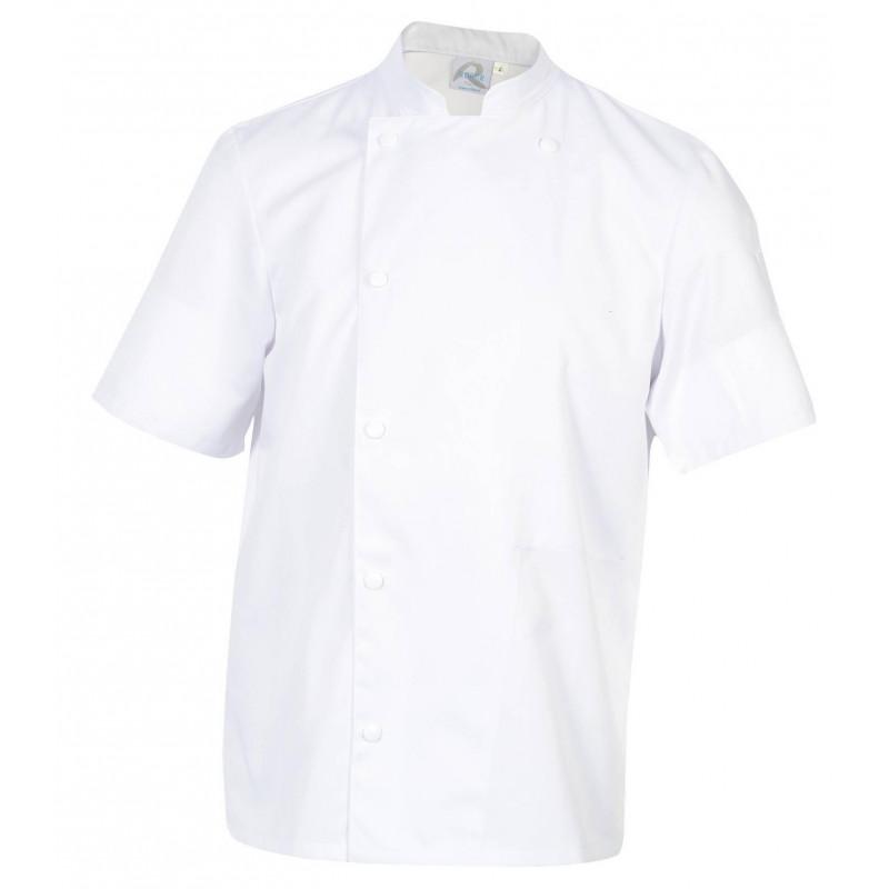 MADRAS Veste de cuisine blanche manches courtes ROBUR